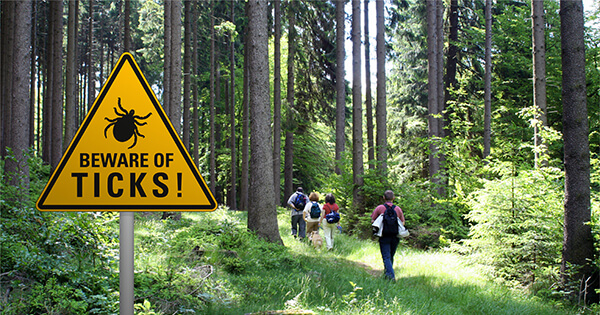 """Beware of Ticks"" sign in wooded area"